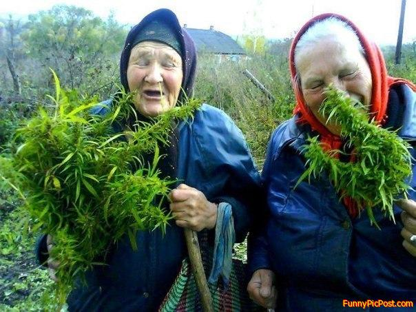 Old Stoners