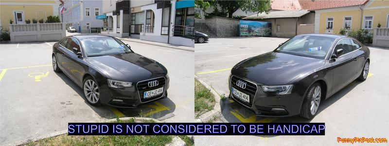 Art of parking of the handicaped mind.