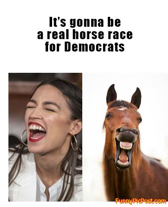 Democratic Horse Race